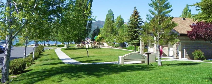 Rotary Park Lawn